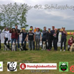 Hundefrisbee in Österreich. Come and join Austrias largest frisbee movement. DiscDogDuell tournament series and national championship