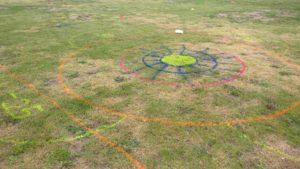 Impressionen vom Hundefrisbee Turnier (DDD) in Schlosshof