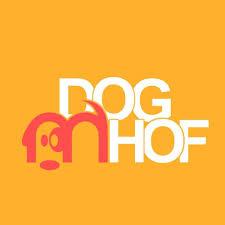Dogfrisbeeturnier in der Hundeschule Doghof in Schloss Hof